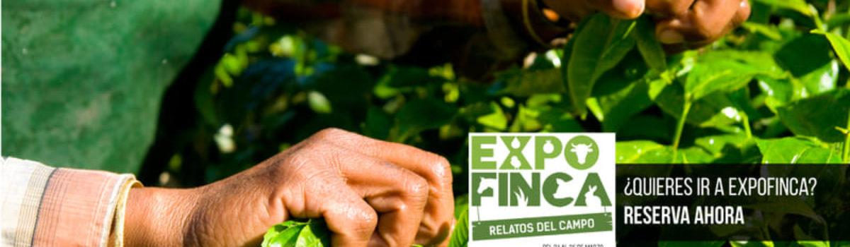 EXPOFINCA 2019